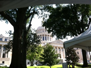 MS Book Festival with capitol dome